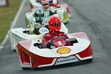 Formel 1 - Schumacher, Gordon, Barros...: Massas hochkar�tiges Kart-Feld