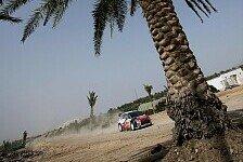 WRC - FIA hat richtig entschieden: Umfrage: Rallye Jordanien soll stattfinden