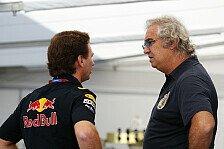 Formel 1 - Webber-Aus reine Spekulation: Red Bull kontert Briatore-Kritik