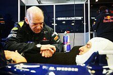 Formel 1 - Neues Gewichtslimit schon 2014: Newey setzt sich f�r schwere Fahrer ein