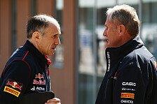 Formel 1 - Nasr wird es nicht: Marko: Ricciardo-Nachfolger noch nicht klar
