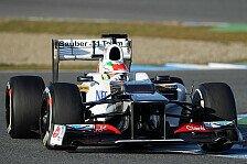 Formel 1 - Zeitaufwendiger Wechsel: Sauber: Getriebe�lfilter sorgt f�r Zeitverlust
