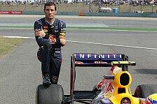 Formel 1 - Dann haben wir ein Problem...: Horner: Wo ist Webbers Sprit hin?