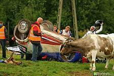 Mehr Rallyes - K�he auf der Flucht: Video - Robert Kubicas heftiger Unfall in Polen