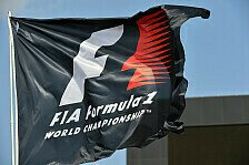 Formel 1 - Teams und FIA erhalten mehr Geld: Gewinn der Formel 1 2013 gesunken