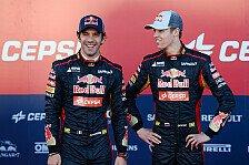 Formel 1 - Besser als im Vorjahr: Toro Rosso: Teamchef fordert klare Steigerung