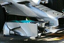 Formel 1 - Es gibt nicht die eine perfekte L�sung: Neue Nasen spalten die Experten