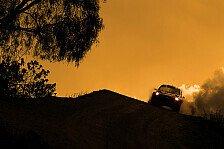WRC - �berschl�ge, B�ume, Bier: Die Eckpfeiler der Rallye Mexiko