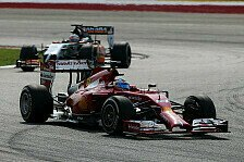 Formel 1 - Erneut �berzeugende Leistung: H�lkenberg: Alonso hat mich lebend gefressen
