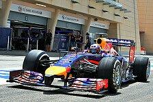 Formel 1 - Einer der Besten: Horner schw�rmt: Ricciardo ist brillant