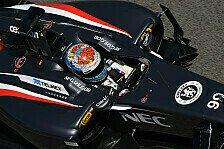 Formel 1 - Ein Schritt nach vorne: Sutil greift nach den Top-Ten