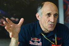 Formel 1 - Wer schnell ist, darf auch abfliegen: Tost: Ein Crash ist Teil des Spiels