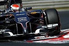 Formel 1 - Das Bestm�gliche erreicht: Bestes Saison-Resultat f�r Adrian Sutil