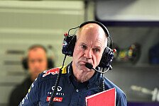 Formel 1 - 'Entschuldigung an Mr. Newey': Red Bull: Kein F3-Engagement f�r Newey