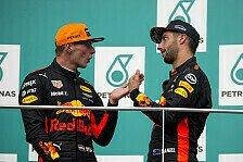Formel 1, Red-Bull-Teamchef: Ricciardo-Aus nur wegen Verstappen