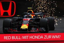 Formel 1 - Video: Formel 1 2019: Red Bull mit Honda zur WM?