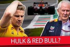 Formel 1 2020, Marko: Darum ist Hülkenberg nichts für Red Bull