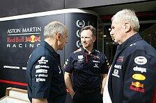 Formel 1 - Marko zu Australien-Absage: Red Bull wollte fahren
