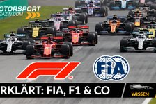 Formel 1 - Video: FIA, F1 & Co - Erklärt: So funktioniert die Formel 1
