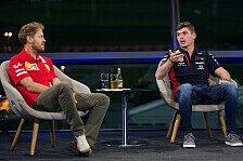 Formel 1, Verstappen relativiert Vettel-Frage: war nur höflich