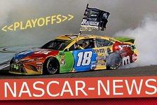NASCAR 2020 Phoenix: News und Infos zum Championship 4 Finale