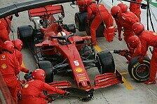Formel 1, Ralf Schumacher: Ferrari ging mit Vettel nie gut um