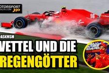 Formel 1 - Video: Vettel & Co: Wie gut sind die Regengötter der Formel 1?