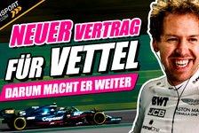 Formel 1 - Video: Fix: Vettel bleibt in der Formel 1! Steigt Volkswagen ein?