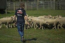 Formel 1 - Motosport-Magazin TV: Vettel hat Herde im Griff