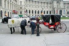 Formel 1 - Politiker macht sich für Wien GP stark