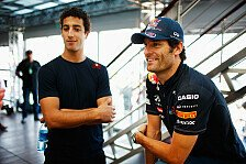 Formel 1 - Jones sieht Ricciardo 2013 bei RBR