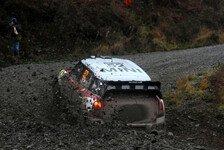 WRC - Mini mit Freud und Leid in Wales