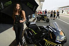 MotoGP - Bilder: Katar GP - Girls