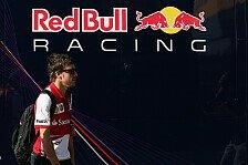 Formel 1 - Coulthard: Gedanken zum Alonso/Red Bull-Gerücht