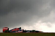 Formel 1 - Saisonbilanz 2013: Toro Rosso