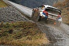 WRC - Größte Gefahr für Ogier: Robert Kubica