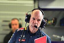 Formel 1 - Red Bull: Kein F3-Engagement für Newey