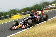 Formel 1 - Toro Rosso in Ungarn: Hoffnung auf Regen