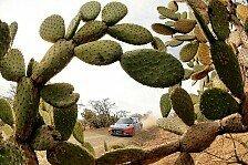WRC - Video: Mexiko: Hyundai nach Shakedown bereit für Podestkampf