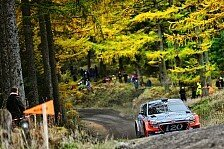 WRC - Video: Wales: Neuville und Paddon im Kampf ums Podium