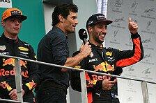 Ricciardos Formel-1-Zukunft - Webber: Schlag erstmal Verstappen
