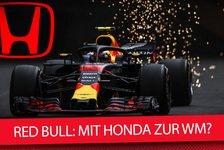 Formel 1, Red Bull: Von Honda überzeugt oder nur Renault-Druck?
