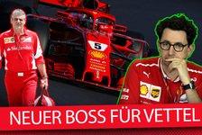 Formel 1 - Video: Ferrari-Teamchef entlassen: Wer ist Vettels neuer Chef?