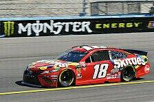 NASCAR: Verdienter dritter Phoenix-Sieg für Kyle Busch