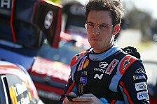 Gaststart in TCR Germany: Thierry Neuville und Tarquini