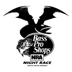 Regular Season Cup-Rennen 24: 58th Annual Bass Pro Shops NRA Night Race - Foto: NASCAR