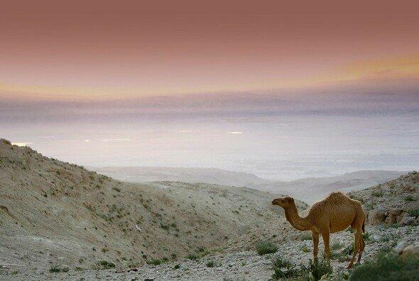 Rallye Jordanien: Tag 1 ist gestrichen