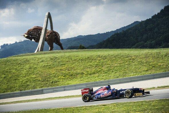 Toro Rosso fühlt sich im Reich des Bullen heimisch