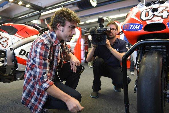 Fernando Alonso sieht sich nach einem Nebenjob um - Foto: Milagro