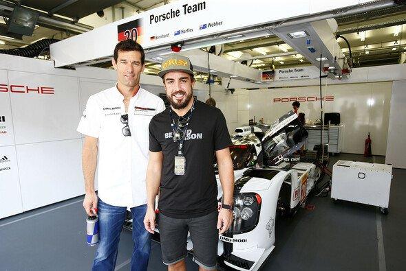Mark Webber verrät uns: Fernando Alonso wollte ihn beim Indy 500 - Foto: Porsche